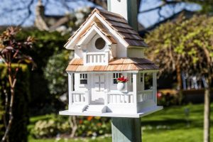 Gardening Presents: Backyard Bird Cottage