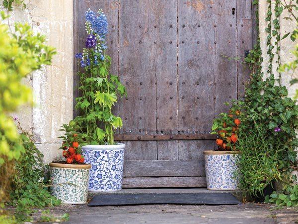 Container Gardening: Plant pots in doorway