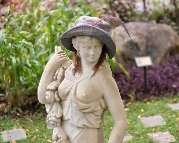 7 things to do on World Naked Gardening Day