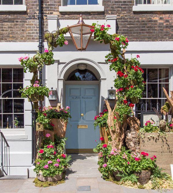 Geraniums at the door