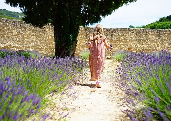 Your Gardening Journey
