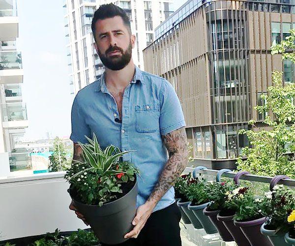 City garden feature image